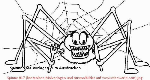 Halloween Ausmalbilder Spinne Einzigartig 26 Spinnen Malvorlagen Zum Ausdrucken Bilder