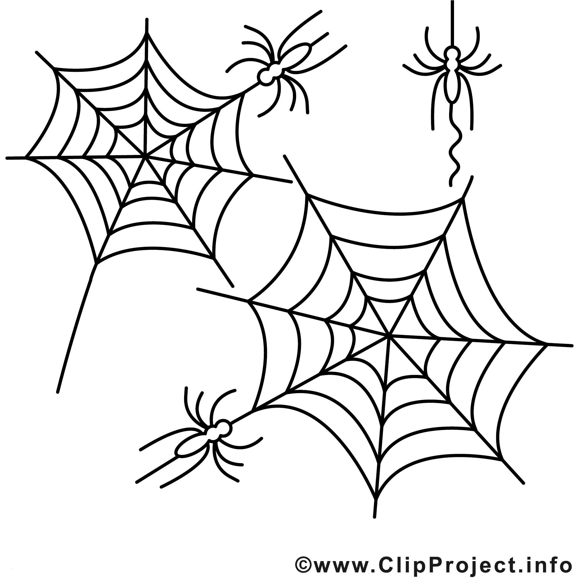 Halloween Ausmalbilder Spinne Einzigartig De Part 70 Bilder