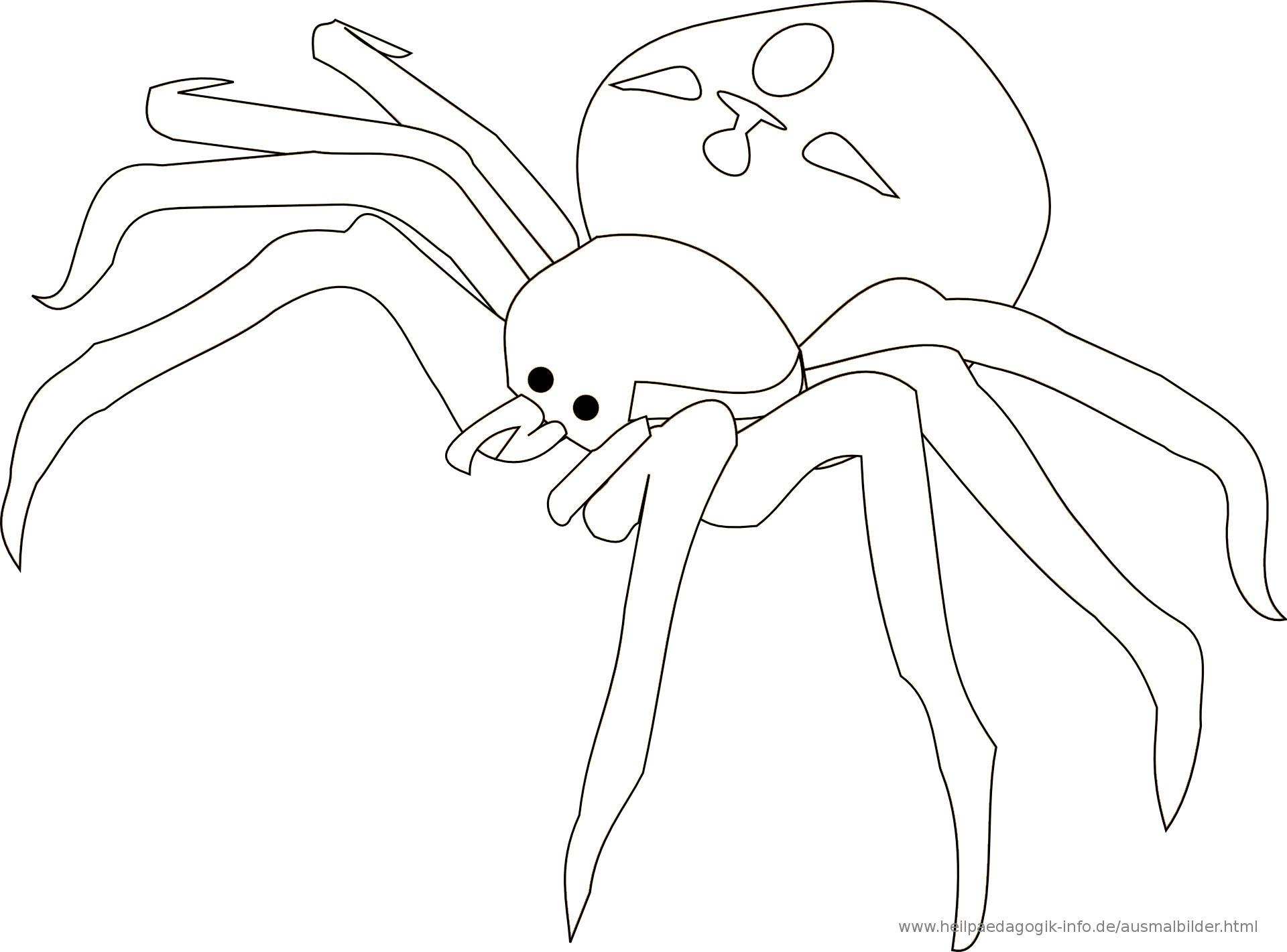 Halloween Ausmalbilder Spinne Frisch Ausmalbilder Käfer Schmetterlinge Insekten Verwandt Mit Ausmalbild Stock