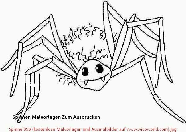 Halloween Ausmalbilder Spinne Genial 26 Spinnen Malvorlagen Zum Ausdrucken Fotografieren