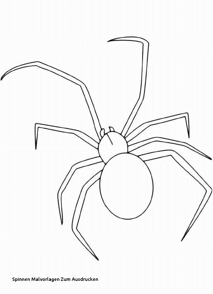 Halloween Ausmalbilder Spinne Genial 26 Spinnen Malvorlagen Zum Ausdrucken Stock