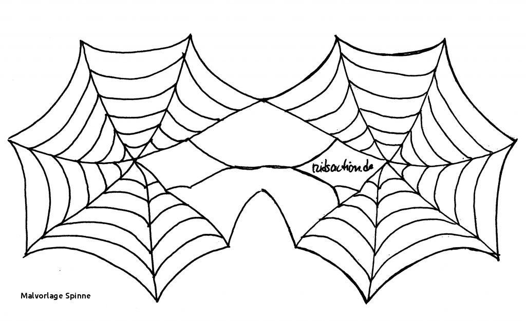 Halloween Ausmalbilder Spinne Inspirierend Malvorlage Spinne Halloween Malvorlagen Spinne Inspirierend Galerie