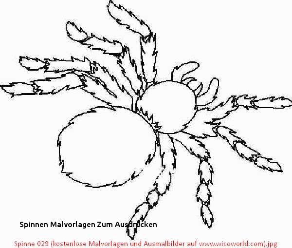 Halloween Ausmalbilder Spinne Neu 26 Spinnen Malvorlagen Zum Ausdrucken Galerie