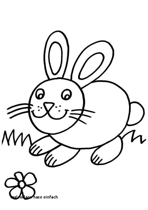 Hase Malen Vorlage Frisch 24 Malvorlage Hase Einfach Colorprint Sammlung