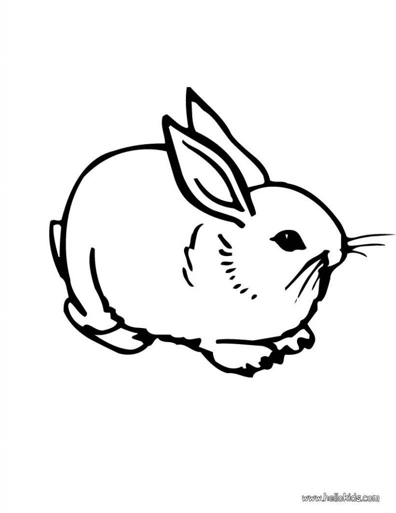 Hase Zum Ausdrucken Neu Druckbare Malvorlage Ausmalbild Hase Beste Druckbare Malvorlagen Sammlung