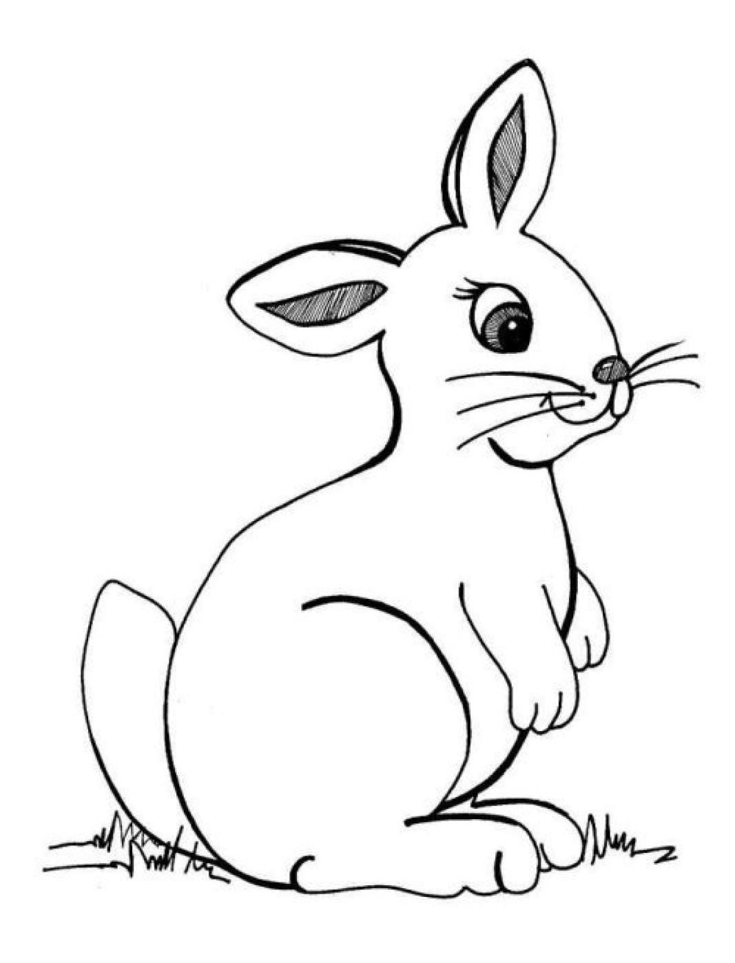 Hasen Bilder Zum Ausdrucken Kostenlos Das Beste Von Ausmalbild Hase Frisch Ausmalbilder Hasen Kostenlos Fotografieren