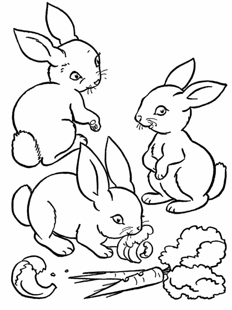 Hasen Bilder Zum Ausdrucken Kostenlos Frisch Kostenlose Malvorlage Für Kindergarten Und Vorschule Baby Und Hase Stock