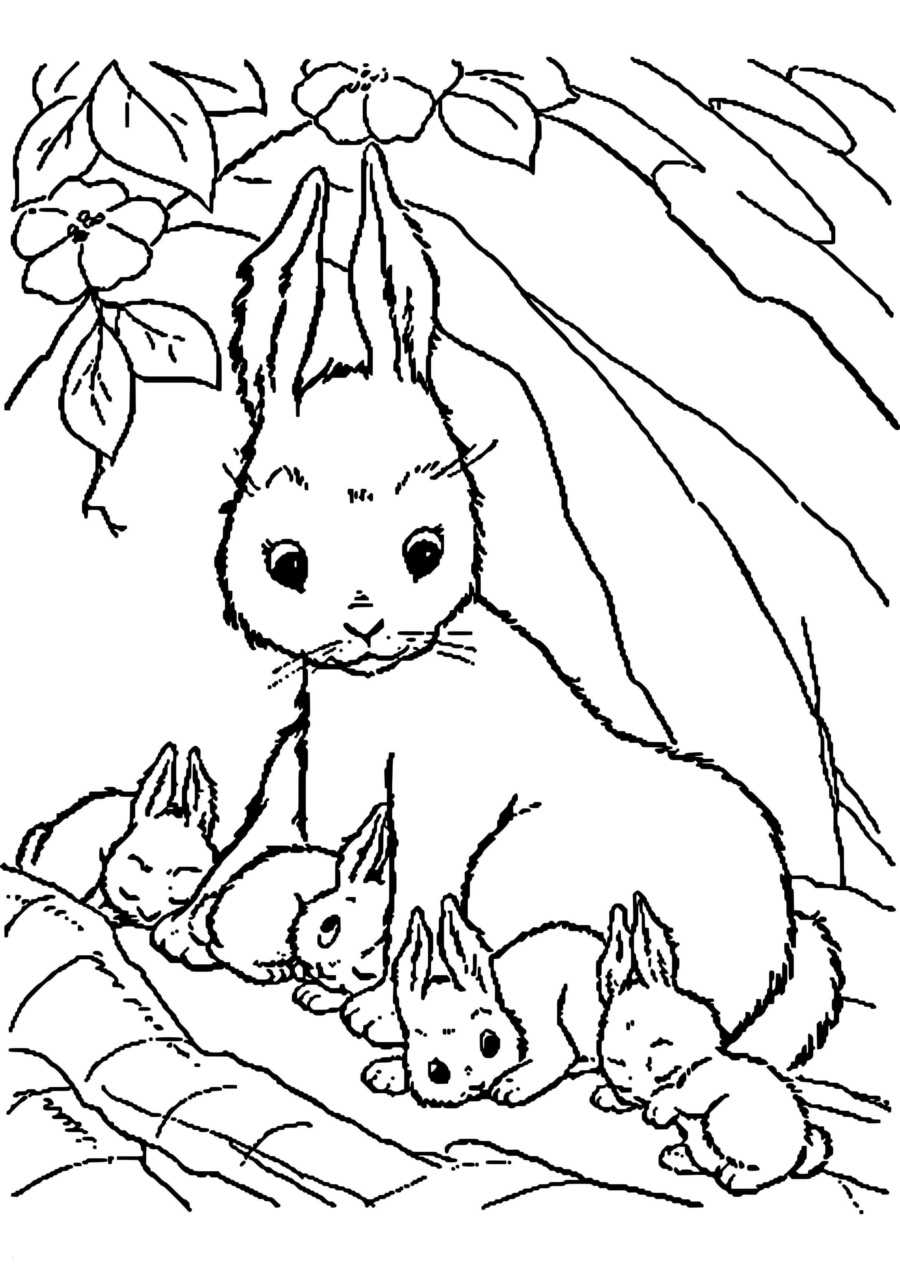 Hasen Bilder Zum Ausdrucken Kostenlos Neu 42 Luxus Kaninchen Ausmalbilder Beste Malvorlage Stock