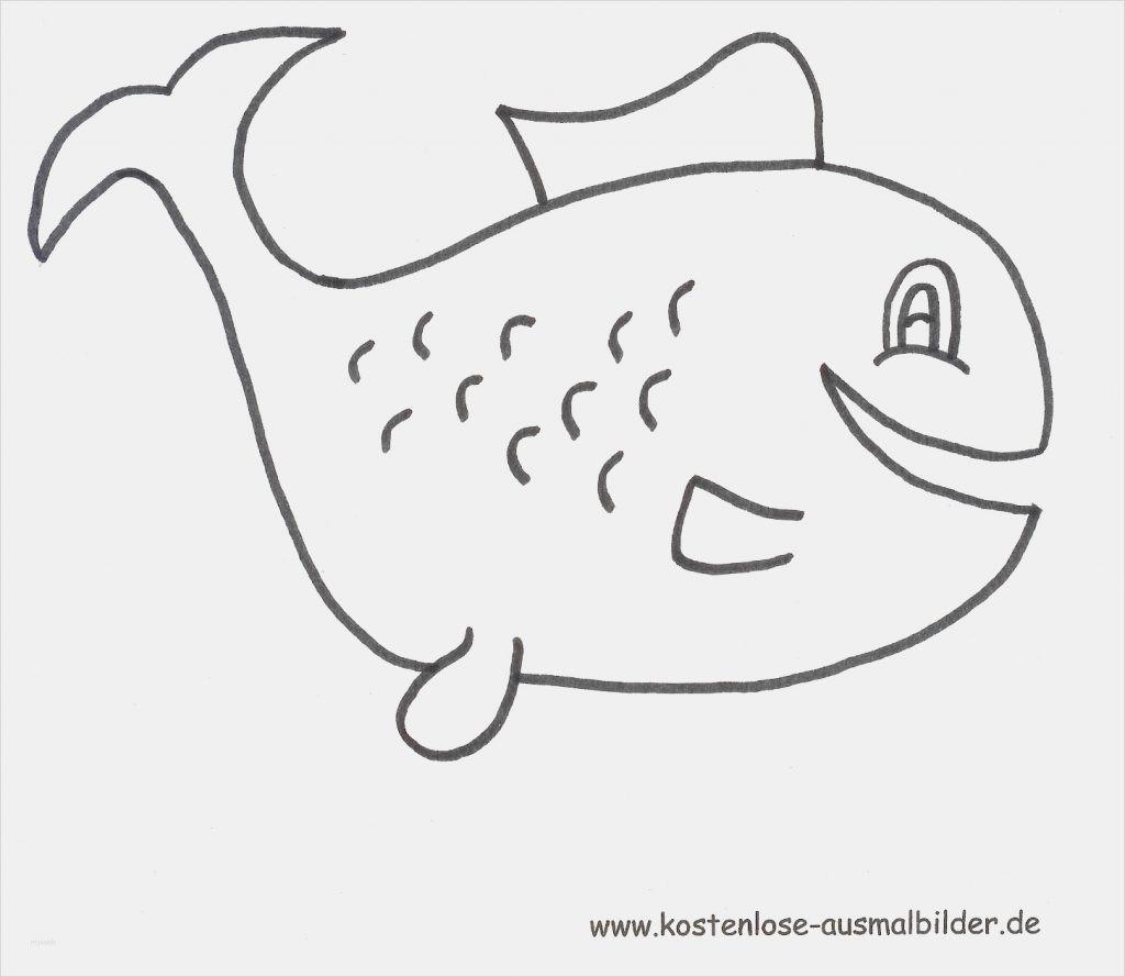Hello Kitty Malvorlage Frisch Janbleil Ausmalbilder Von Hello Kitty Zum Ausdrucken Ausmalbild Das Bild