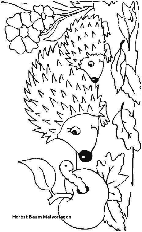 Herbstbild Zum Ausmalen Neu Herbst Baum Malvorlagen Malvorlage A Book Coloring Pages Best sol R Bilder