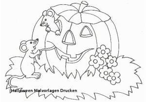 Hexen Bilder Zum Ausdrucken Neu Malvorlage Hexe Kostenlose Malvorlage Halloween Hexe Auf Ihrem Fotografieren