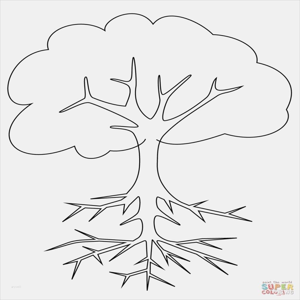 Hogwarts Wappen Zum Ausmalen Frisch 37 Baum Ausmalbilder Scoredatscore Schön Harry Potter Hogwarts Bilder
