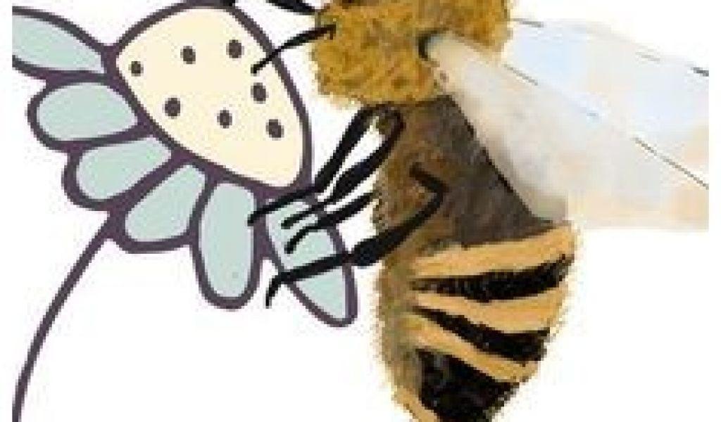 Hummel Bilder Zum Ausmalen Frisch 530 Best Kita Ideen Pinterest Färbung Bienen Bilder Zum Stock