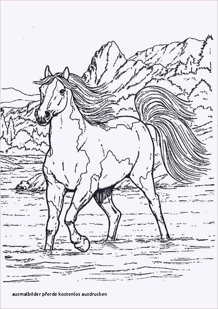James Rizzi Ausmalbilder Das Beste Von Ausmalbilder Pferde Kostenlos Ausdrucken Indianer Ausmalbilder Bilder