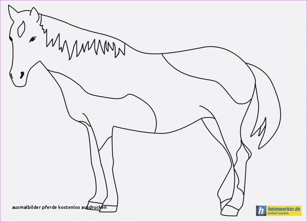 James Rizzi Ausmalbilder Genial Ausmalbilder Pferde Kostenlos Ausdrucken 37 Ausmalbilder Erwachsene Sammlung
