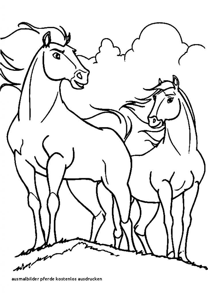 James Rizzi Ausmalbilder Neu Ausmalbilder Pferde Kostenlos Ausdrucken Indianer Ausmalbilder Fotografieren