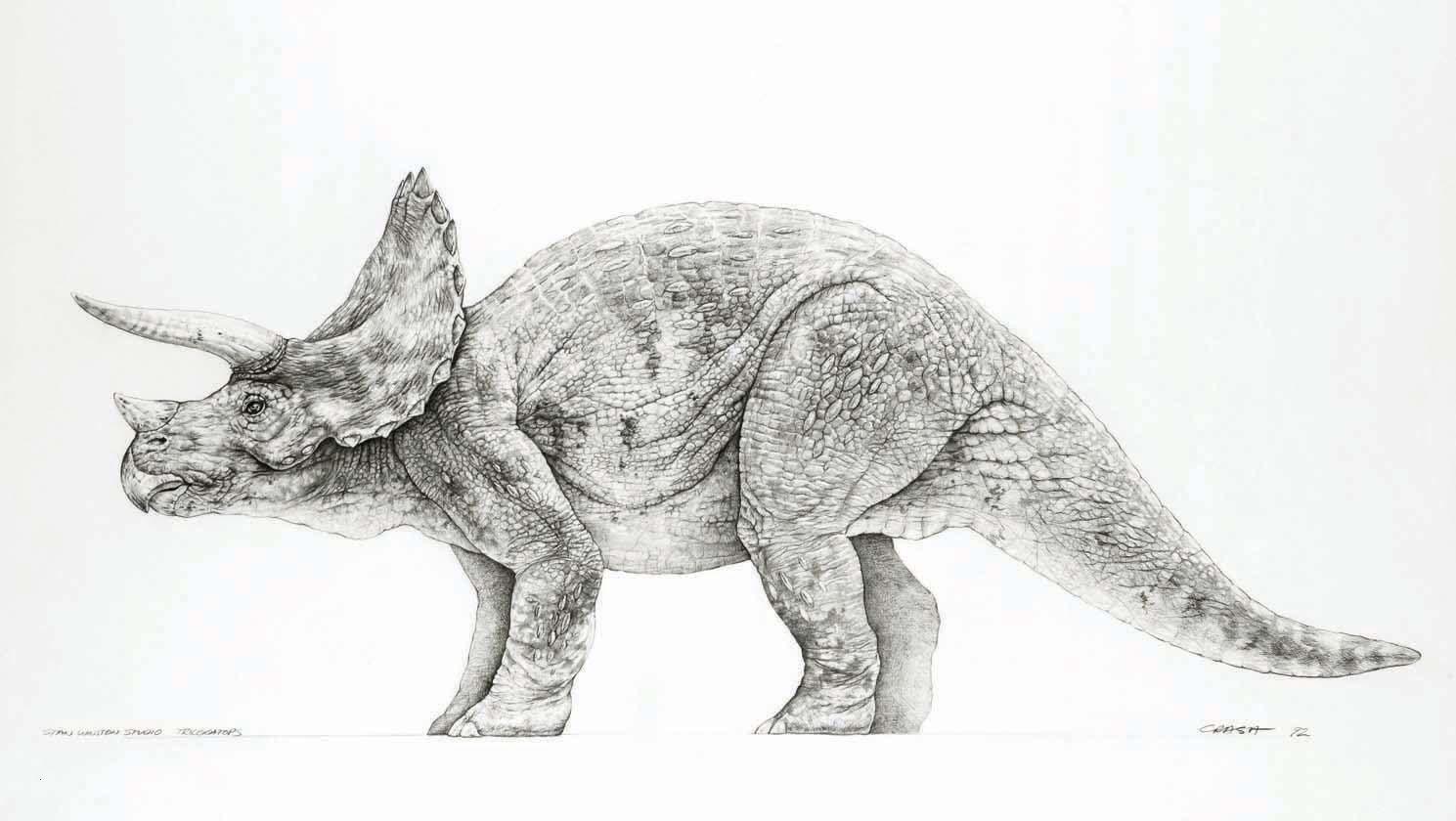 Jurassic Park Ausmalbilder Frisch 30 Ausmalbilder Jurassic World forstergallery Galerie