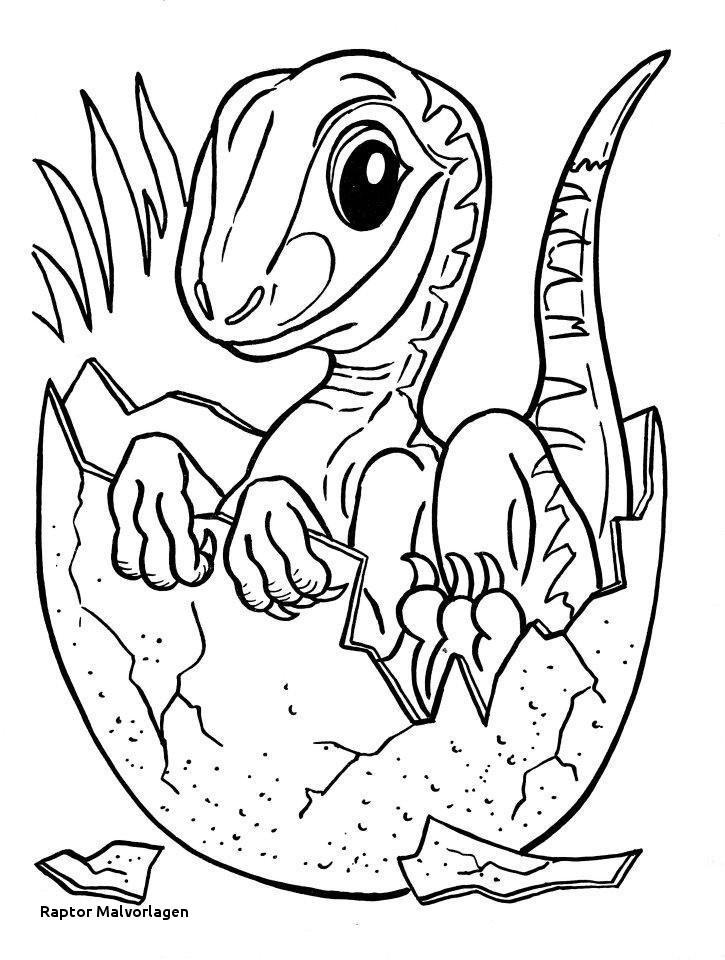 Jurassic Park Ausmalbilder Inspirierend 24 Raptor Malvorlagen Fotos
