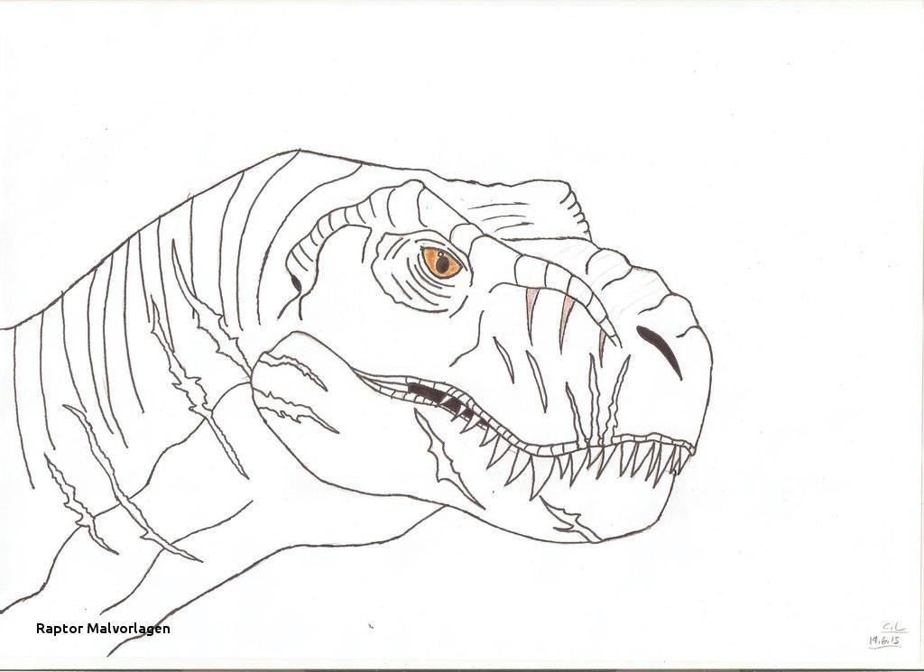 Jurassic Park Ausmalbilder Inspirierend 24 Raptor Malvorlagen Galerie