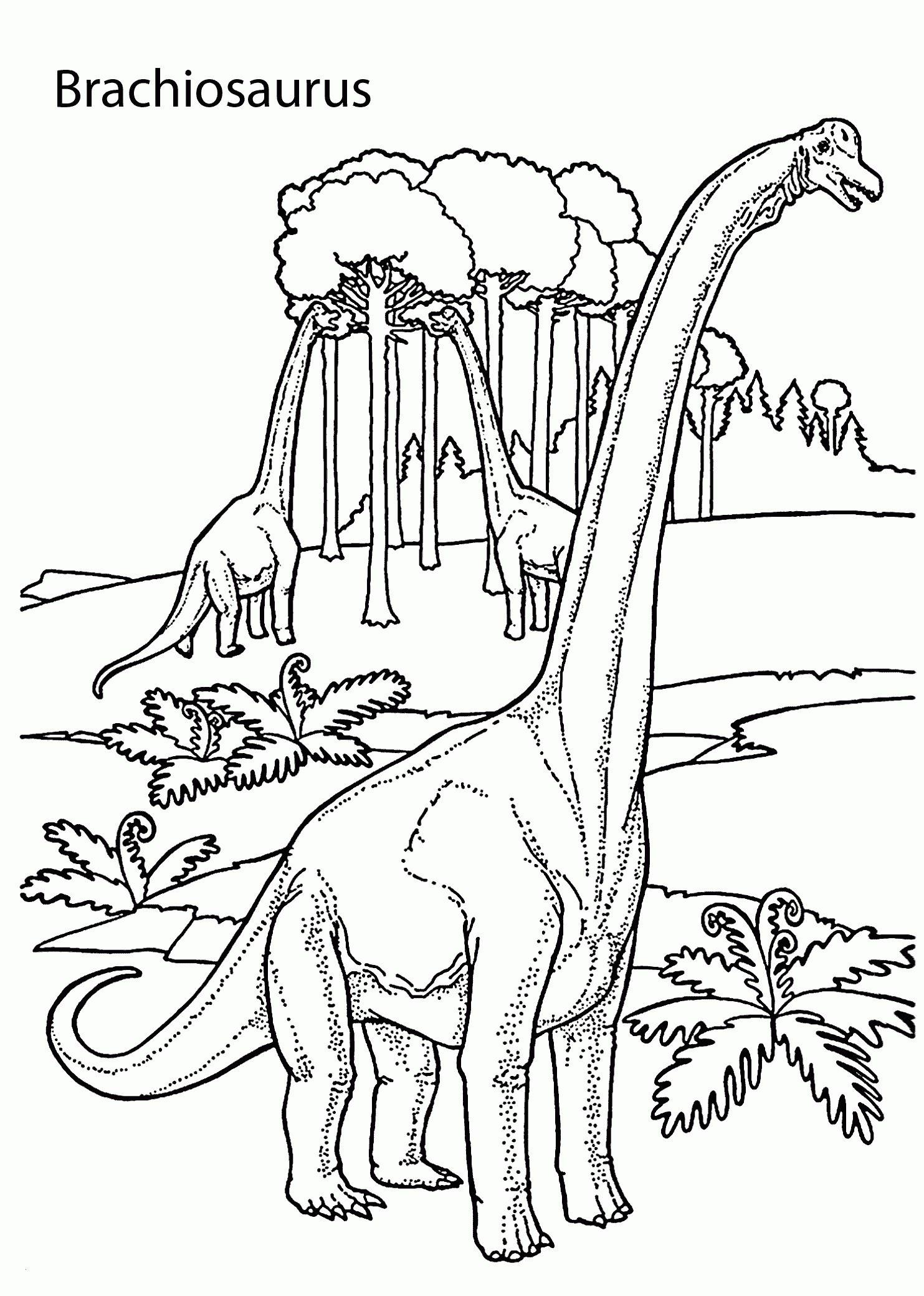 Jurassic Park Ausmalbilder Neu Ausmalbilder Jurassic World Schön Spinosaurus Ausmalbilder – Neu Bild