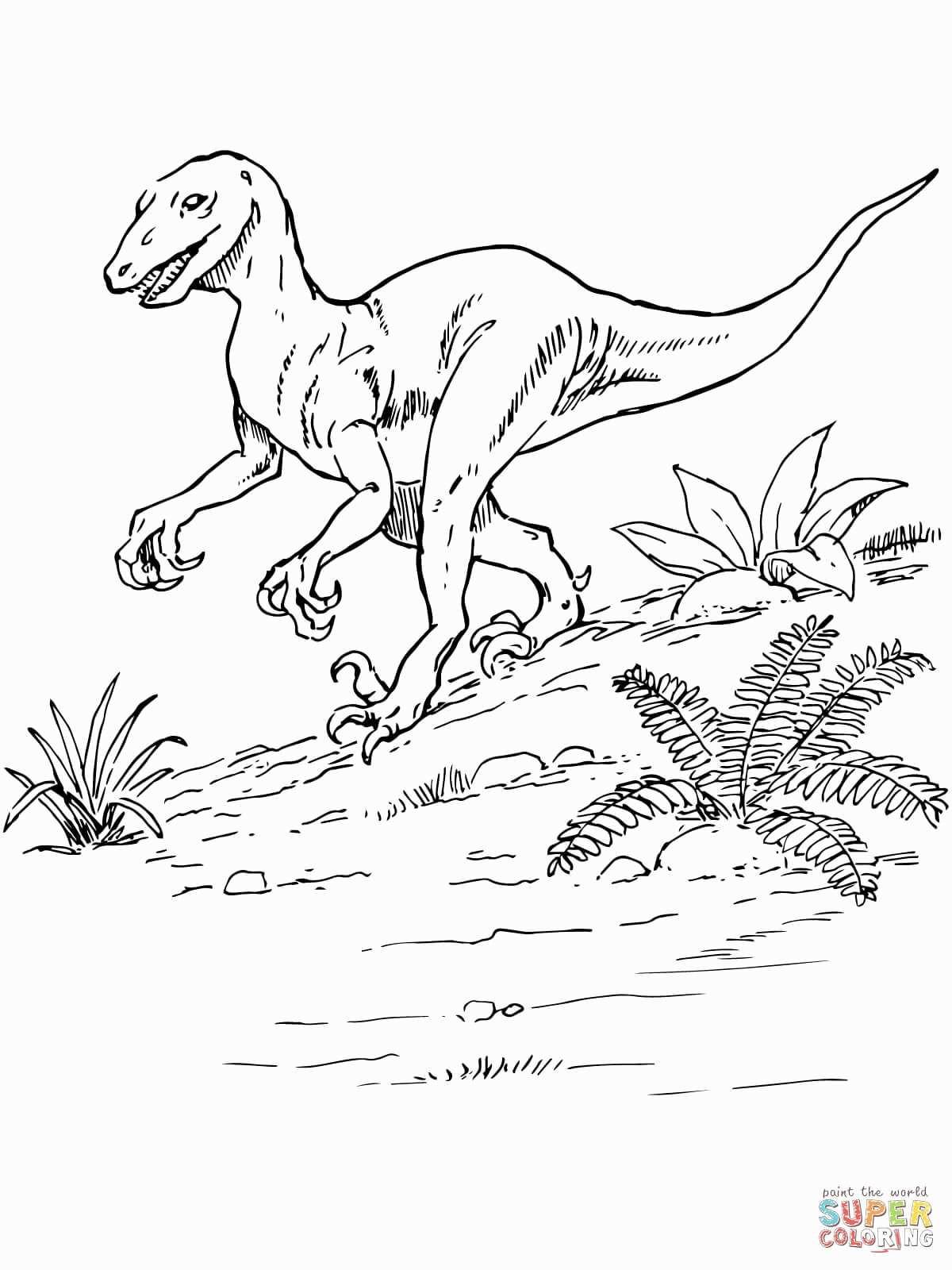 Jurassic World Ausmalbilder Das Beste Von Jurassic World Coloring Pages New Malvorlagen Igel Frisch Igel Galerie