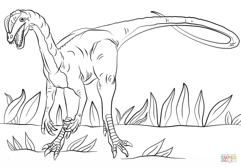 Jurassic World Ausmalbilder Einzigartig Ausmalbilder Jurassic World Schön Spinosaurus Ausmalbilder – Neu Fotografieren