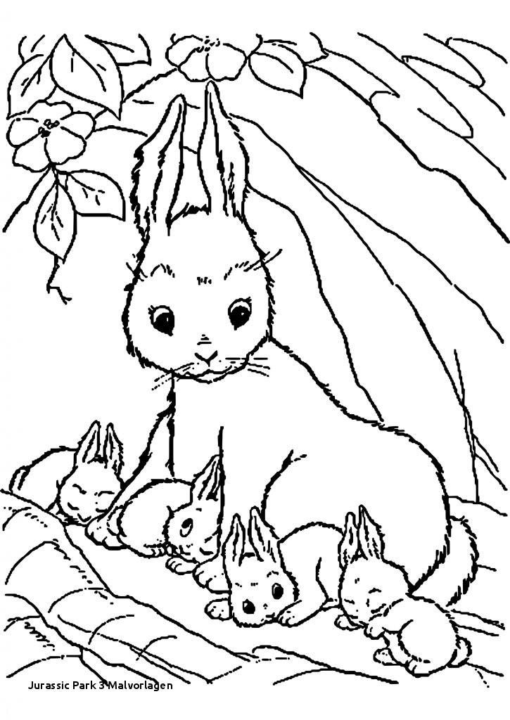 Jurassic World Ausmalbilder Frisch Jurassic Park 3 Malvorlagen 40 Kaninchen Ausmalbilder Zum Ausdrucken Sammlung