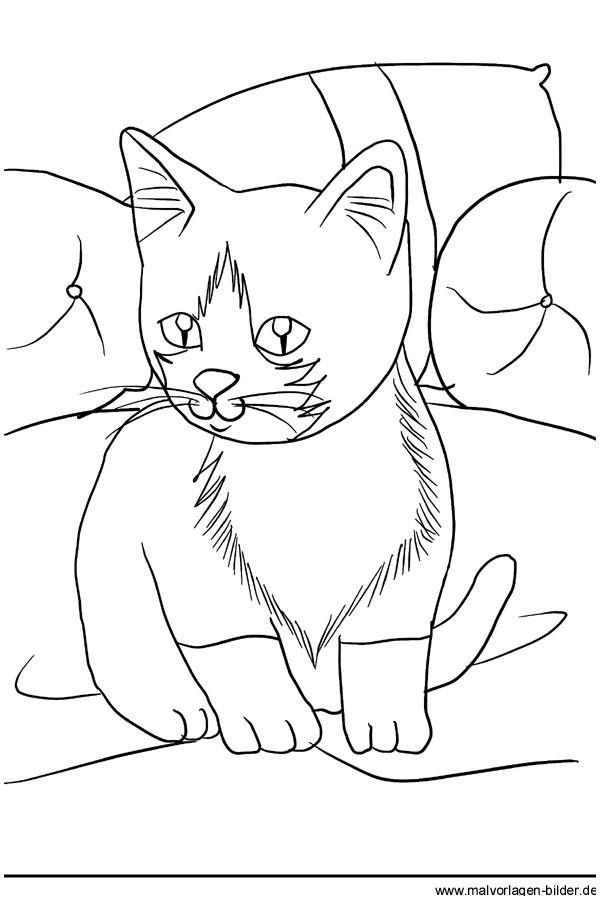 Katzen Bilder Zum Ausmalen Einzigartig Malvorlage Katze Katze Ausmalen 127 Malvorlage Katzen Ausmalbilder Galerie