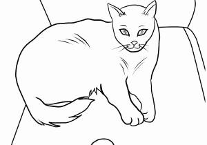 Katzen Bilder Zum Ausmalen Frisch 33 Génial S De Katzen Bilder Zum Ausdrucken Kostenlos Stock