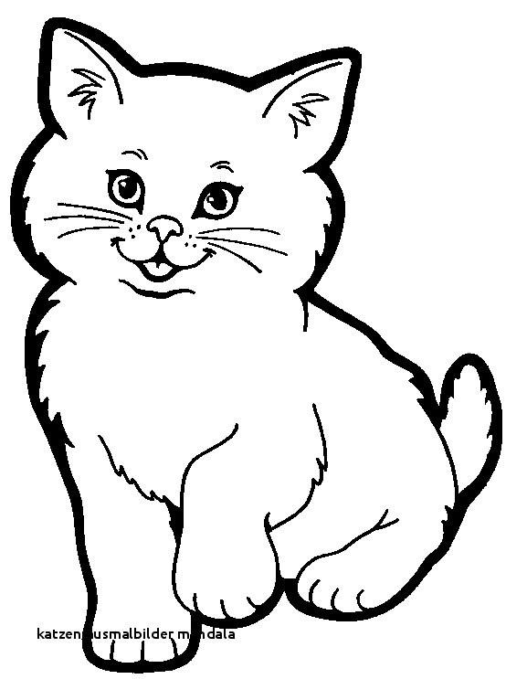 Katzen Bilder Zum Ausmalen Inspirierend Katzen Ausmalbilder Mandala Katzen Malvorlagen 123 Malvorlage Katzen Bilder