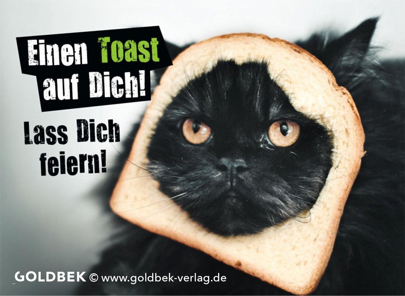 Katzenbilder Zum Ausdrucken Das Beste Von 34 Frisch Fotografie Von Katzen Bilder Zum Ausdrucken Kostenlos Galerie