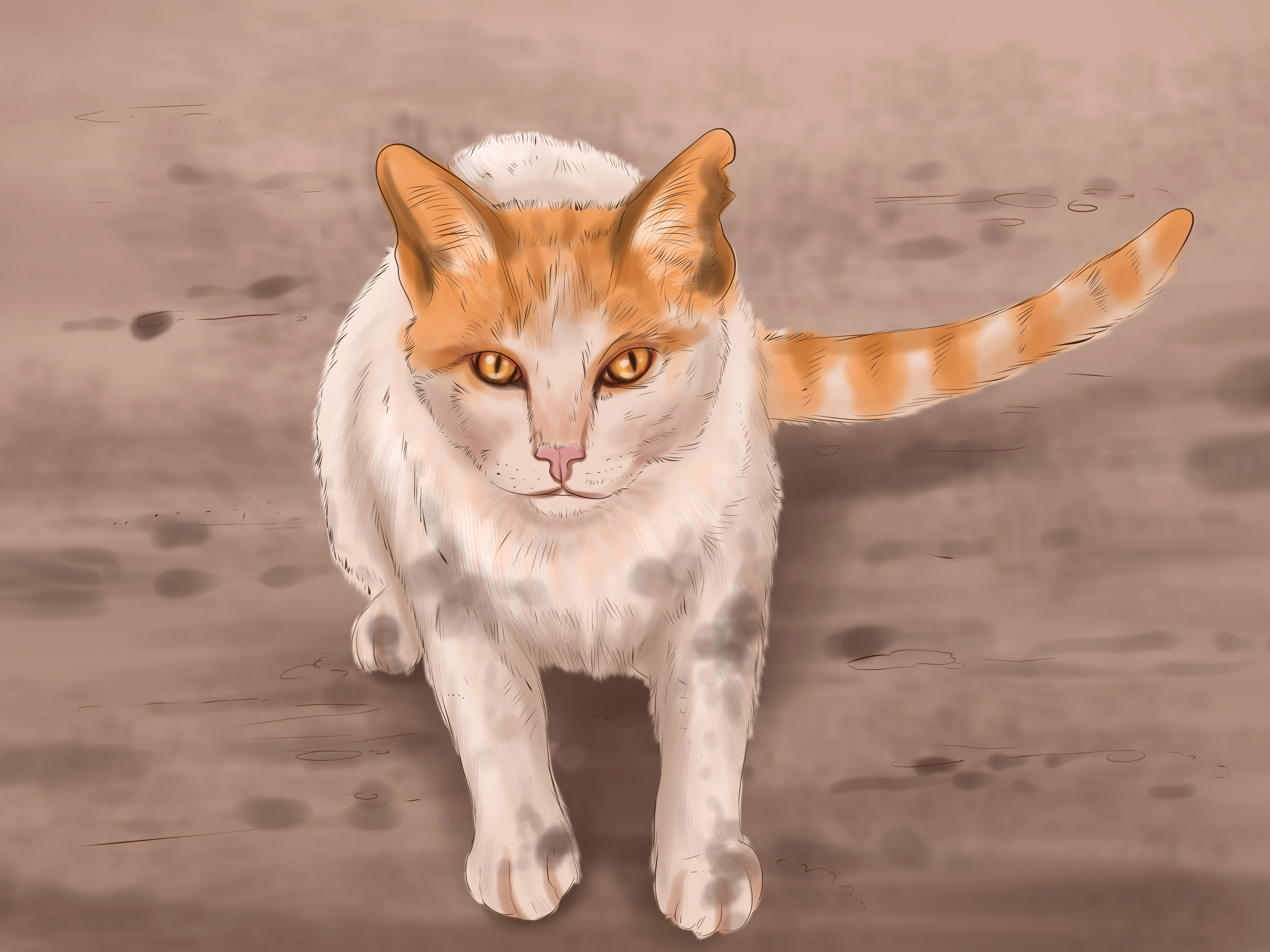 Katzenbilder Zum Ausdrucken Einzigartig 38 Neu Fotos Von Katzen Bilder Zum Ausdrucken Bilder