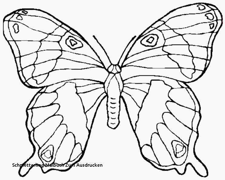 Kleeblatt Zum Ausdrucken Einzigartig Schmetterlinge Zum Ausdrucken Machen Kleeblatt Vorlage Ausdrucken Stock