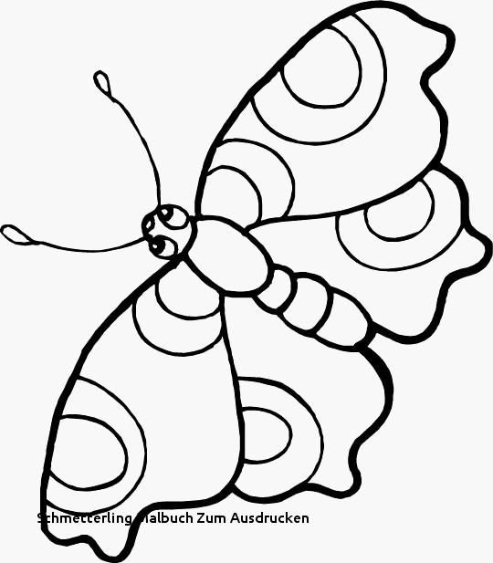 Kleeblatt Zum Ausdrucken Genial Schmetterlinge Zum Ausdrucken Machen Kleeblatt Vorlage Ausdrucken Bilder