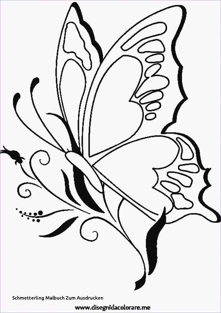 Kleeblatt Zum Ausdrucken Neu Schmetterlinge Zum Ausdrucken Machen Kleeblatt Vorlage Ausdrucken Fotos