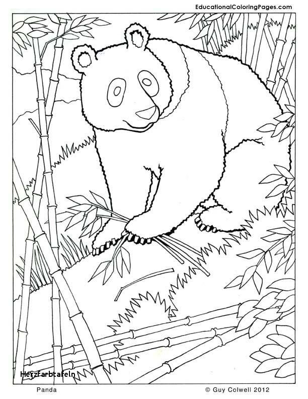 Kung Fu Panda Ausmalbilder Frisch 27 Herzfarbtafeln Fotos