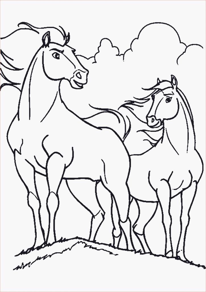 Leo Lausemaus Ausmalbilder Frisch Leo Lausemaus Ausmalbilder Ausmalbilder Pferde Mit Madchen Das Bild