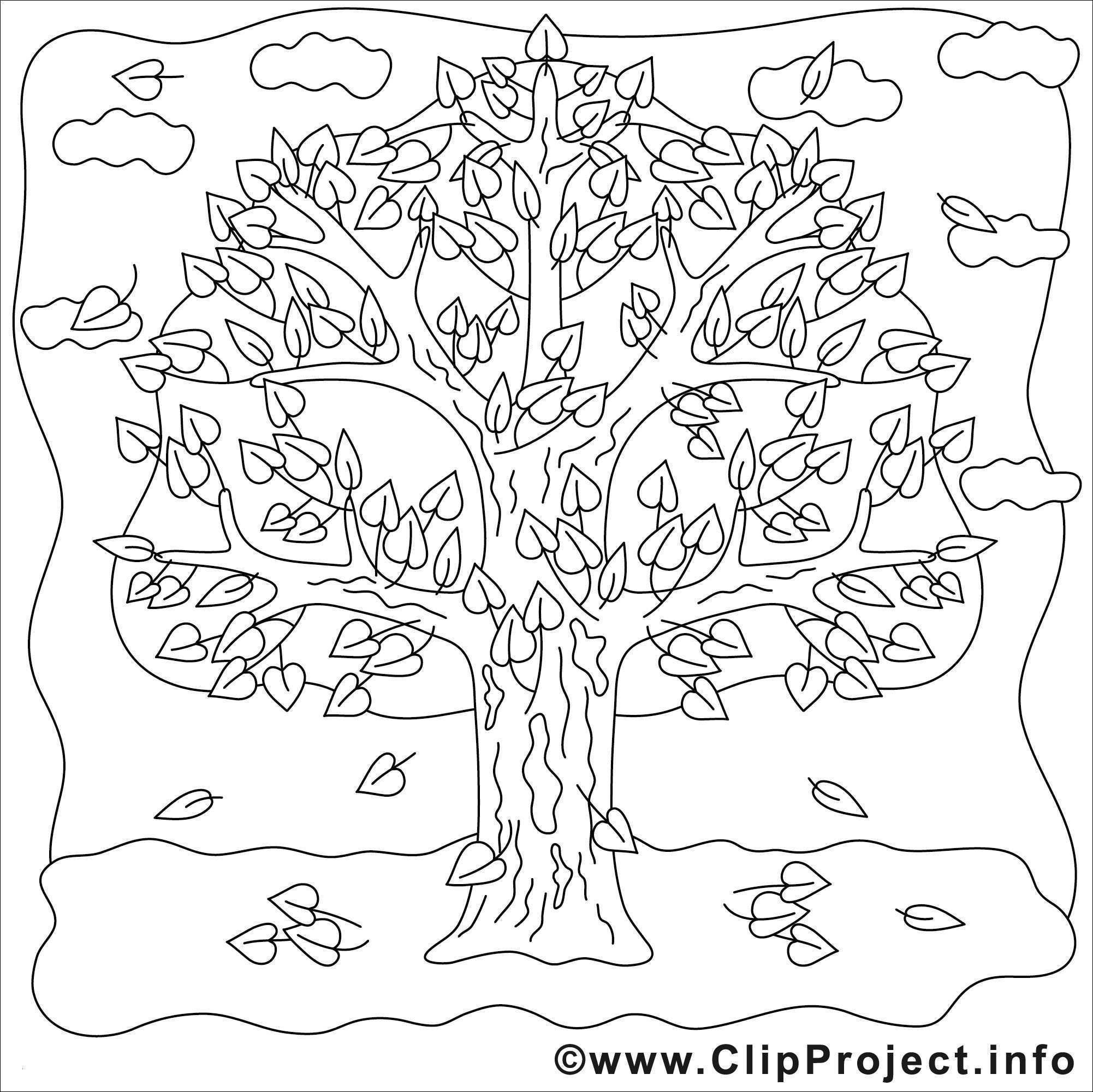 Malvorlage Baum Mit Wurzeln Das Beste Von Kahler Baum Malvorlage Aufnahme 40 Malvorlagen Herbst Baum Fotografieren