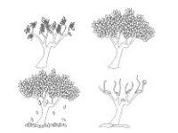 Malvorlage Baum Mit Wurzeln Einzigartig 40 Jahreszeiten Ausmalbilder forstergallery Avec Jahreszeiten Bild