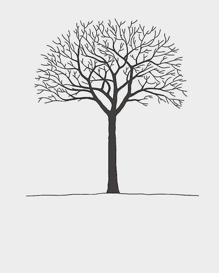 Malvorlage Baum Mit Wurzeln Einzigartig Baum Zur Hochzeit Einzigartig Baum Hochzeit Vorlage Genial Fotos