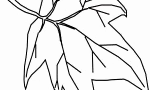 Malvorlage Baum Mit Wurzeln Frisch Kahler Baum Malvorlage Genial Fläktgroup Fläktgroup Ahoaho Expo Das Bild