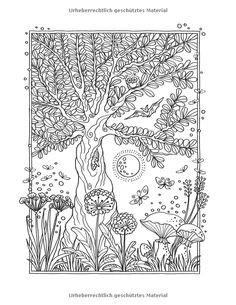 Malvorlage Baum Mit Wurzeln Genial 45 Besten Zencolor Bilder Auf Pinterest Fotografieren