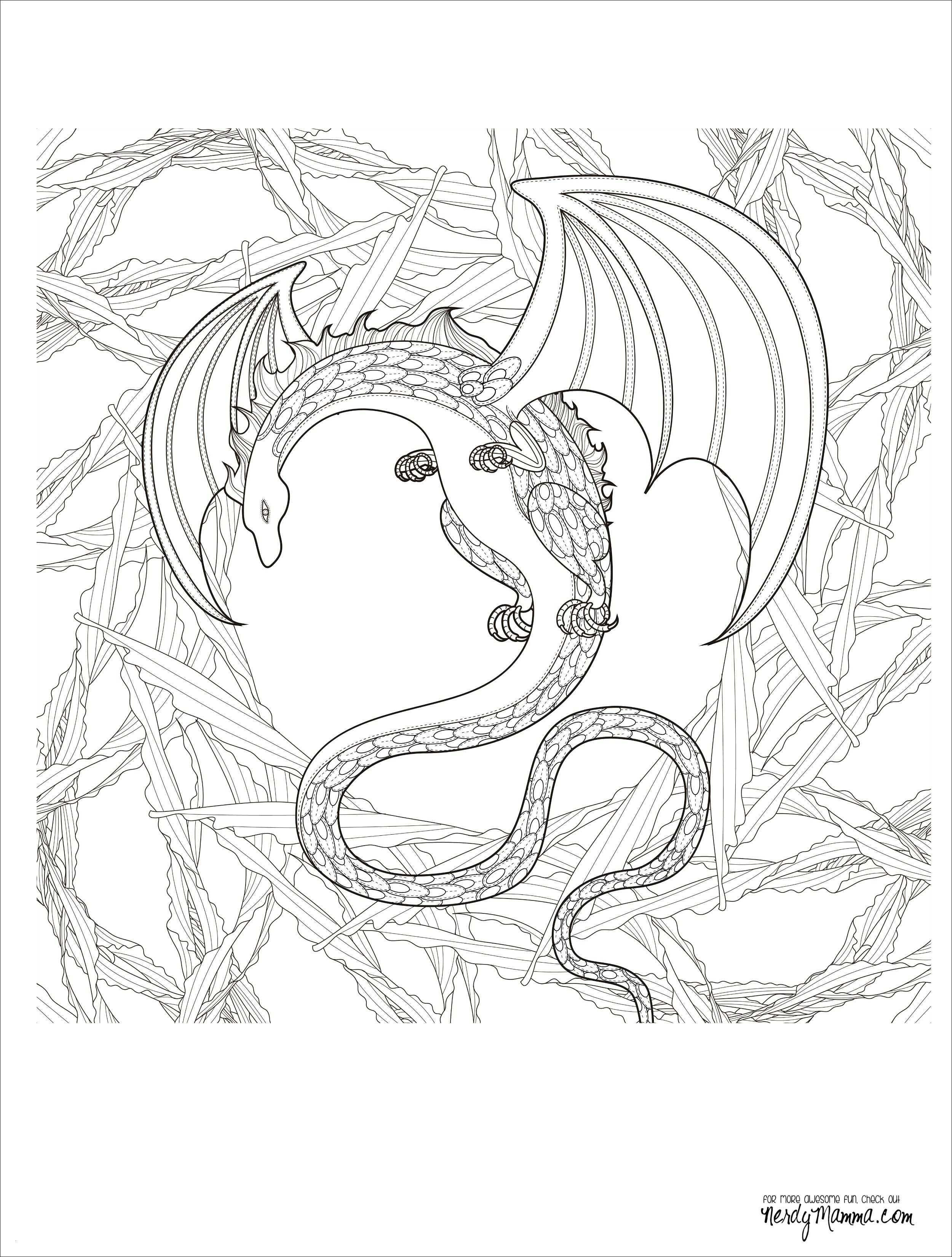 Malvorlage Baum Mit Wurzeln Genial Kahler Baum Malvorlage Aufnahme 40 Malvorlagen Herbst Baum Bild