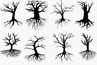 Malvorlage Baum Mit Wurzeln Inspirierend 27 Beste Malvorlage Baum Mit ästen Idee Fotos