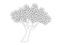 Malvorlage Baum Mit Wurzeln Inspirierend 40 Jahreszeiten Ausmalbilder forstergallery Avec Jahreszeiten Fotos