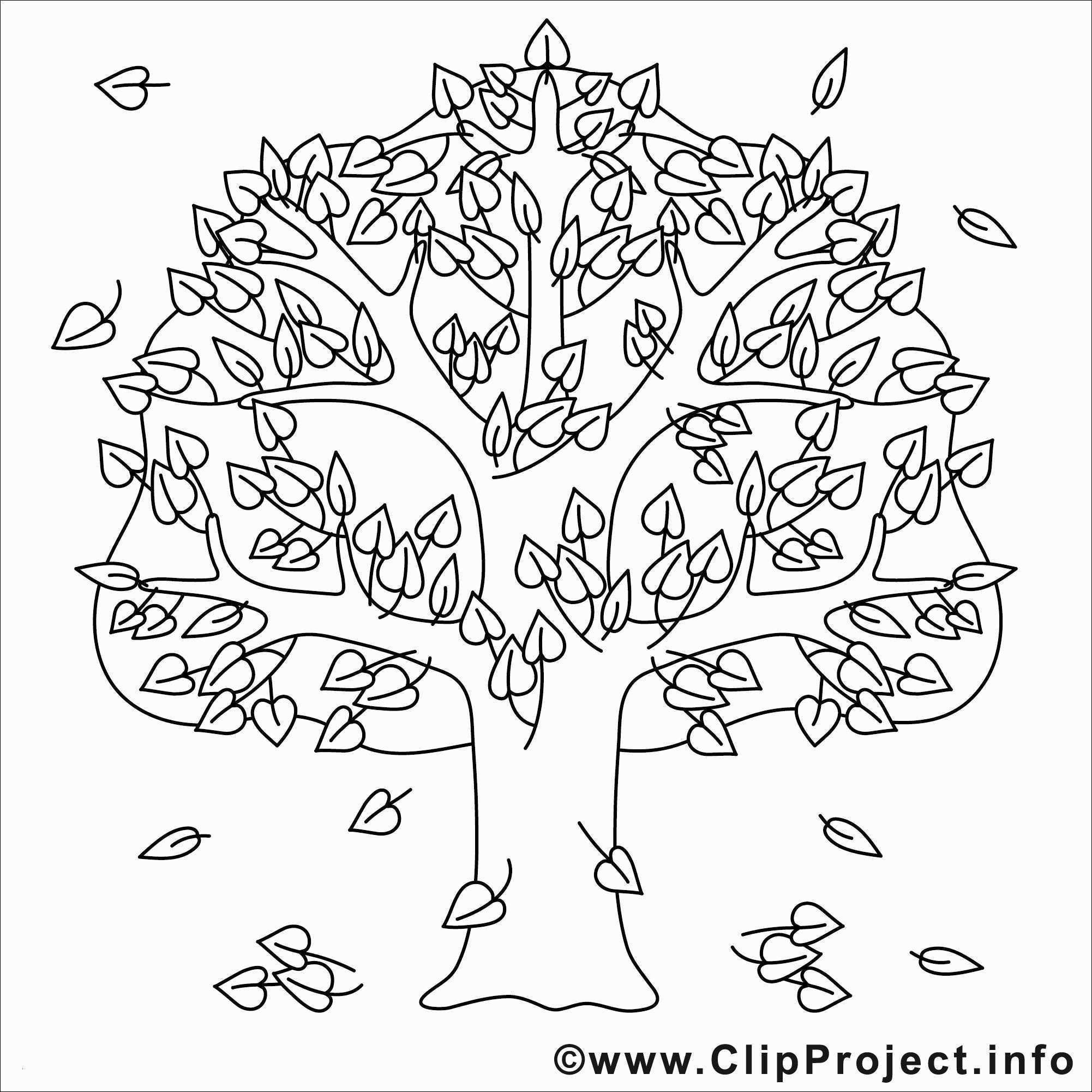 Malvorlage Baum Mit Wurzeln Inspirierend Kahler Baum Malvorlage Aufnahme 40 Malvorlagen Herbst Baum Das Bild