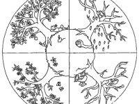 Malvorlage Baum Mit Wurzeln Neu 40 Jahreszeiten Ausmalbilder forstergallery Avec Jahreszeiten Das Bild