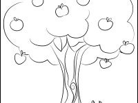 Malvorlage Baum Mit Wurzeln Neu 40 Jahreszeiten Ausmalbilder forstergallery Avec Jahreszeiten Galerie