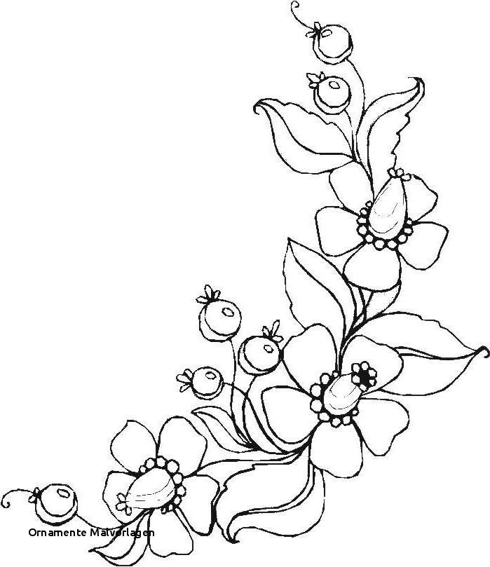 Malvorlage Blumen ornamente Das Beste Von ornamente Malvorlagen Ausmalbilder Blumen Ranken 01 Zeichnen Bilder