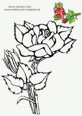 Malvorlage Blumen ornamente Frisch 37 Besten Ausmalbilder Bilder Auf Pinterest Das Bild